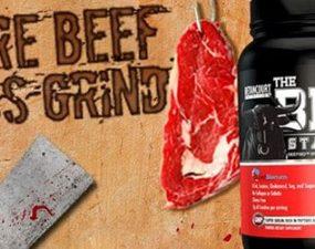 beef standard protein powder