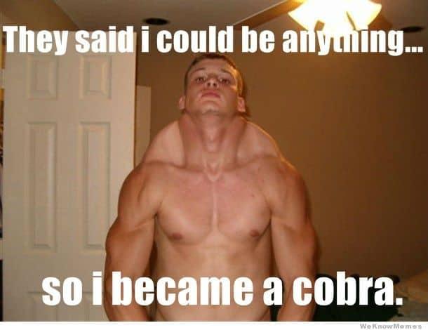 cobra back