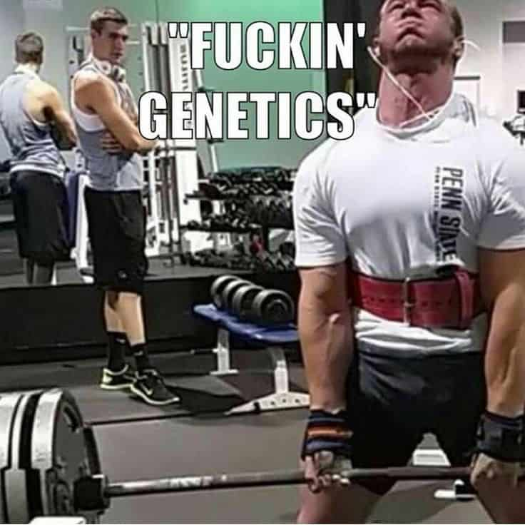 genetics in bodybuilding