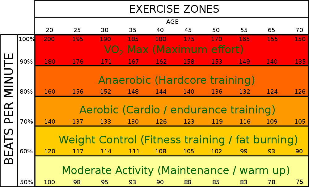 cardio intensity for fat loss