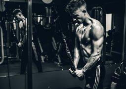 best lean mass gaining stack