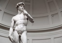 different male body types explained