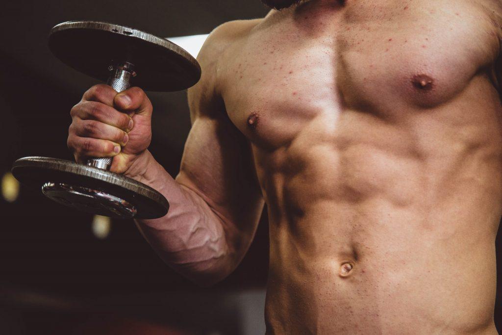 beginner lifter gains explained