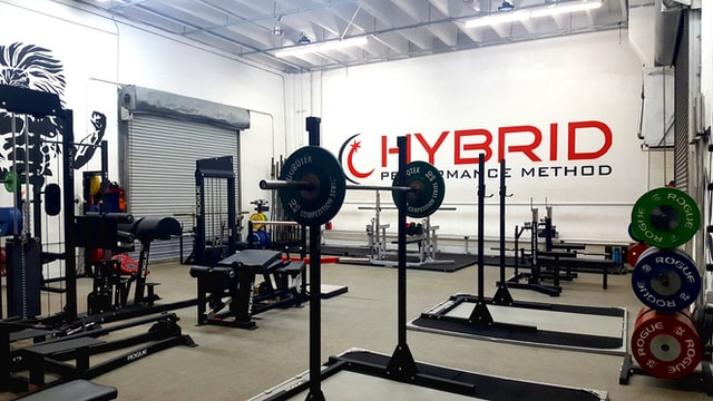 common types of weights in gyms