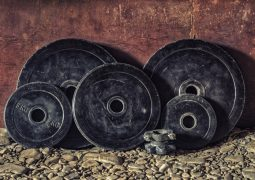 gym weight plates explained